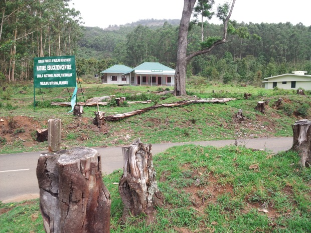 deforestation of munnar